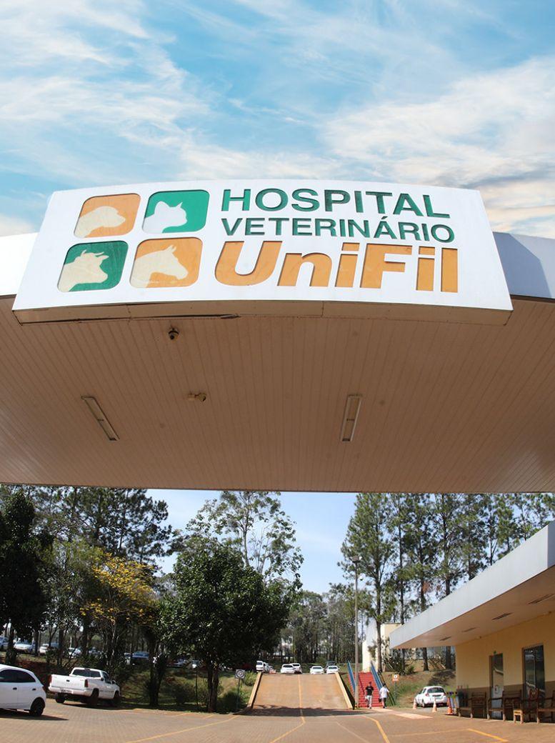 Estrutura Hospital Veterinário